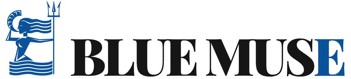 Logo with blue E